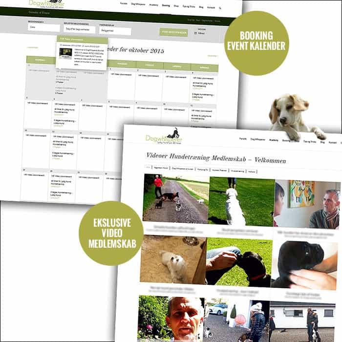 Hundetræning booking og medlemskab