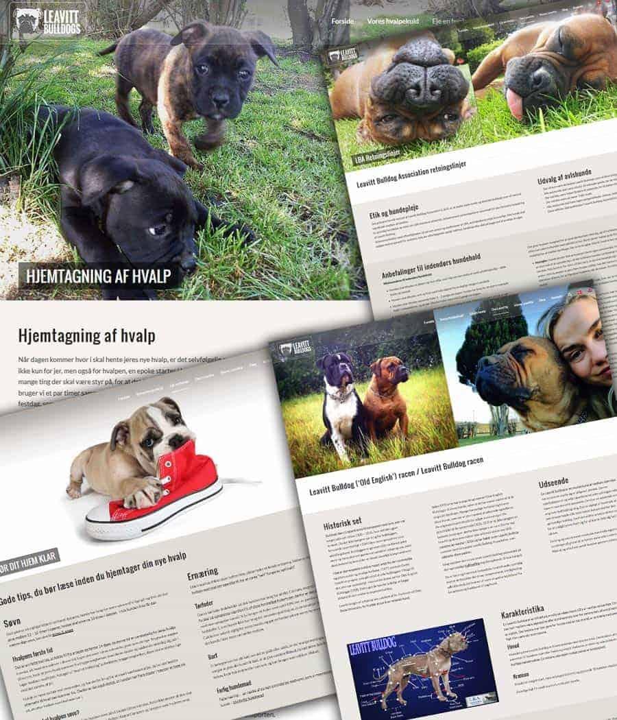 Hjemmeside til hundeopdræt skærmbilleder